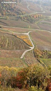 Vineyards of the Jura